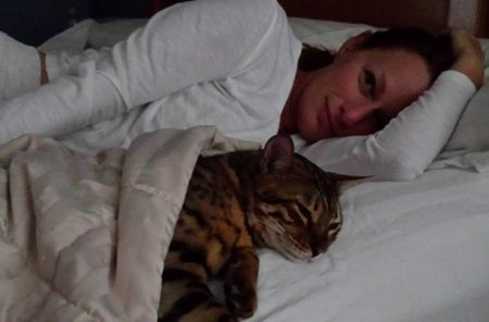 bengal cat snuggling